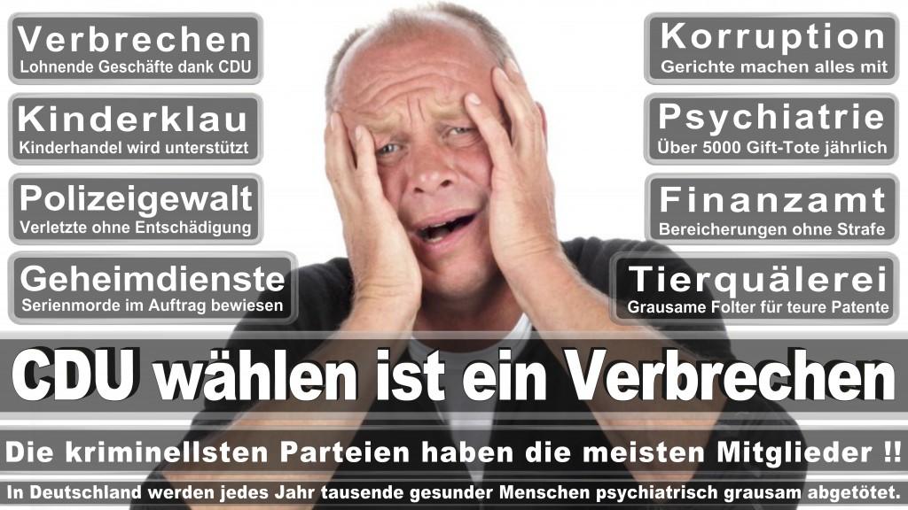 Landtagswahl-Mecklenburg-Vorpommern 2016  (1)