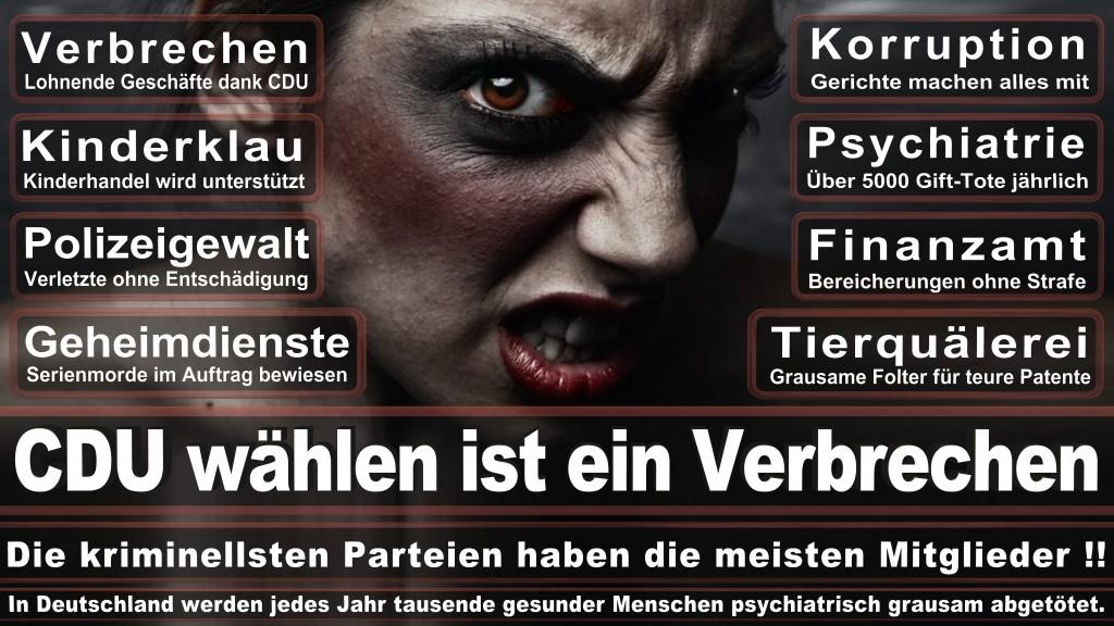 Landtagswahl-Mecklenburg-Vorpommern 2016 (101)