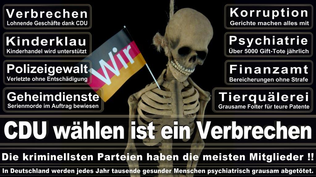 Landtagswahl-Mecklenburg-Vorpommern 2016 (112)