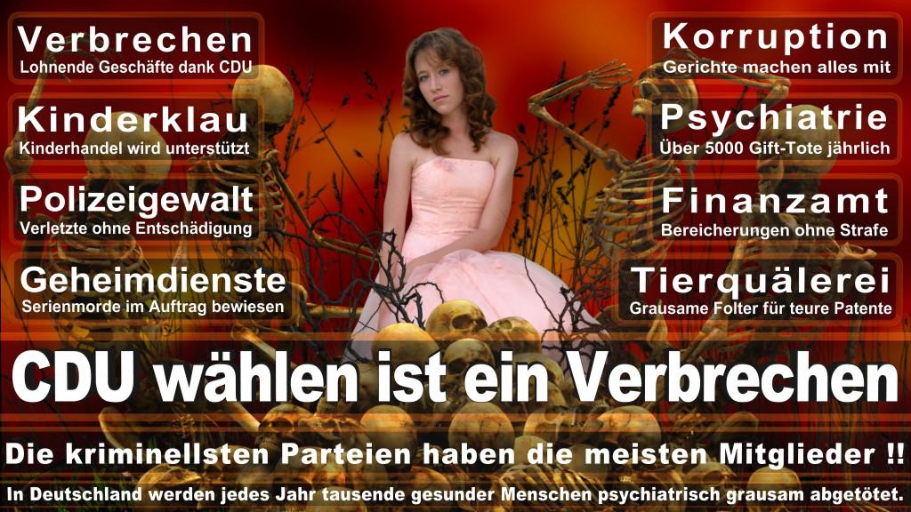Landtagswahl-Mecklenburg-Vorpommern 2016 (116)