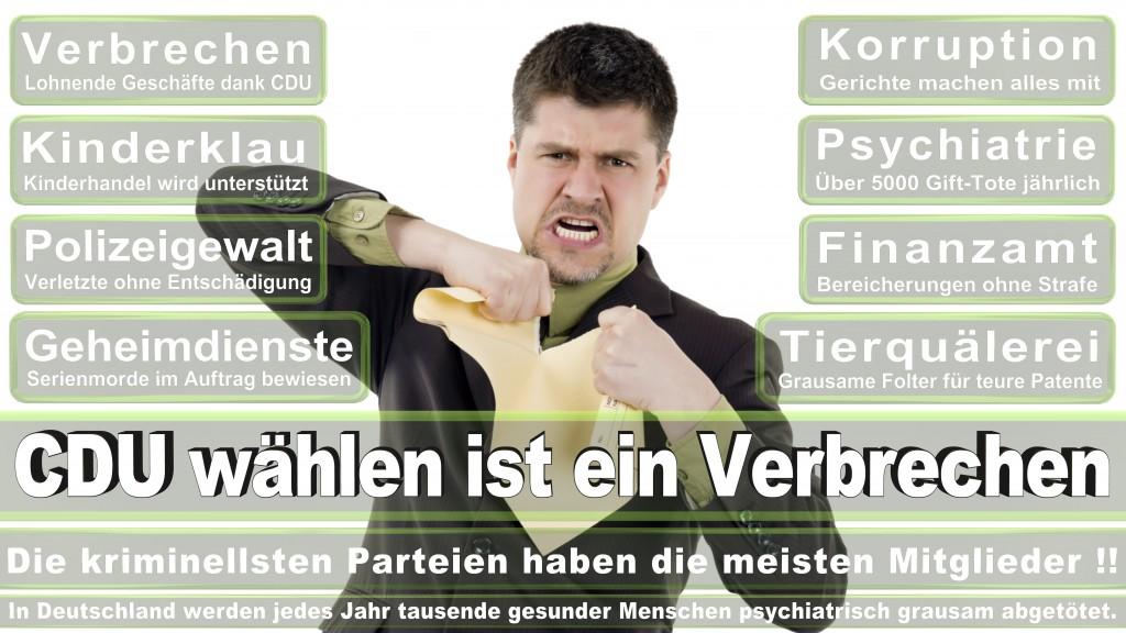 Landtagswahl-Mecklenburg-Vorpommern 2016 (117)