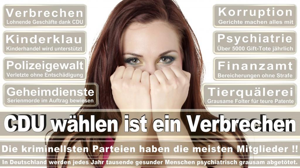 Landtagswahl-Mecklenburg-Vorpommern 2016 (136)