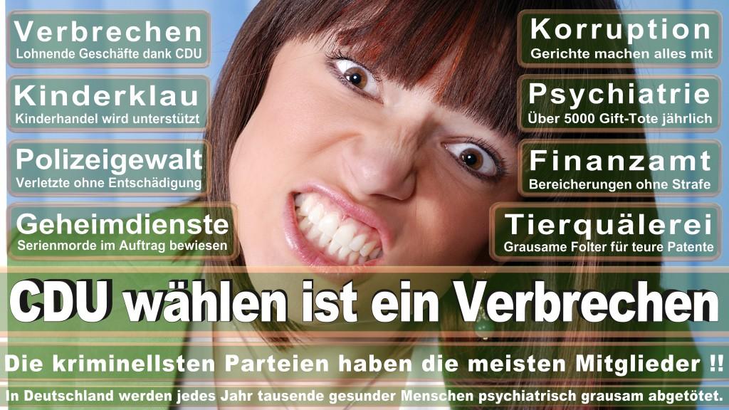 Landtagswahl Mecklenburg-Vorpommern 2016 CDU, Landtagswahl-Mecklenburg-Vorpommern 2016 (14)