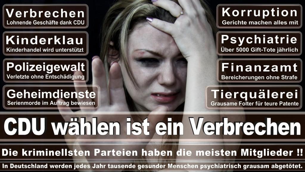 Landtagswahl-Mecklenburg-Vorpommern 2016 (150)