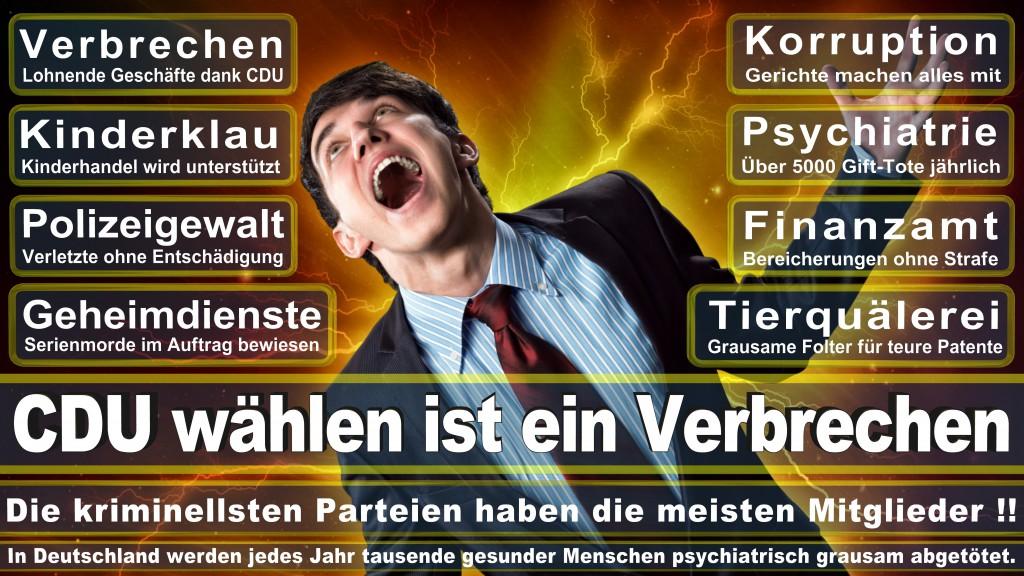 Landtagswahl-Mecklenburg-Vorpommern 2016 (171)