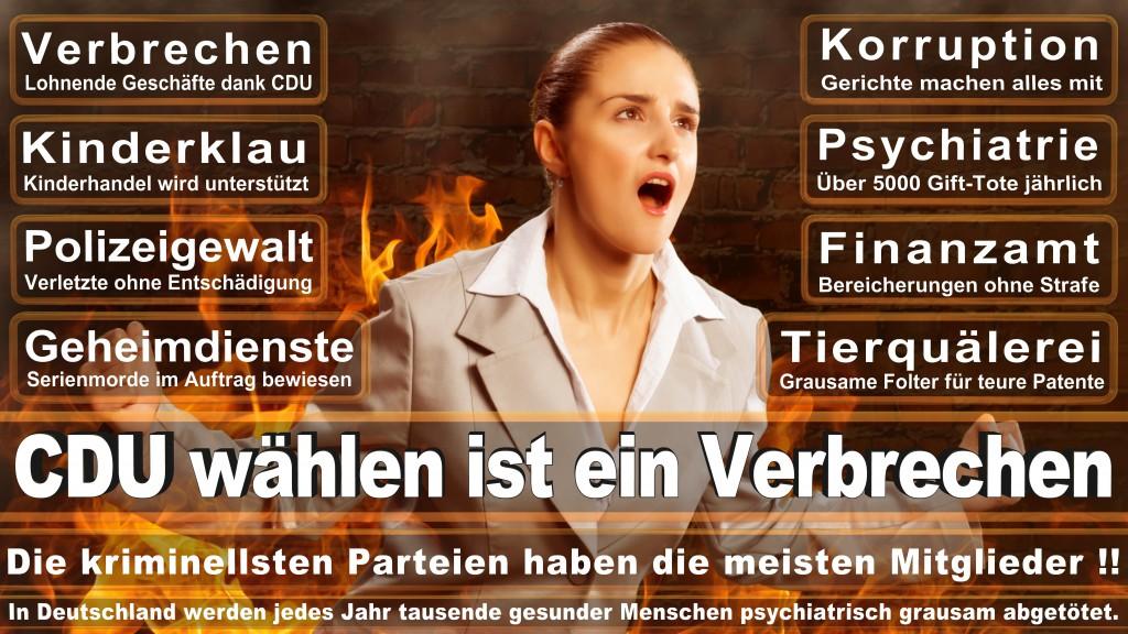 Landtagswahl-Mecklenburg-Vorpommern 2016 (175)