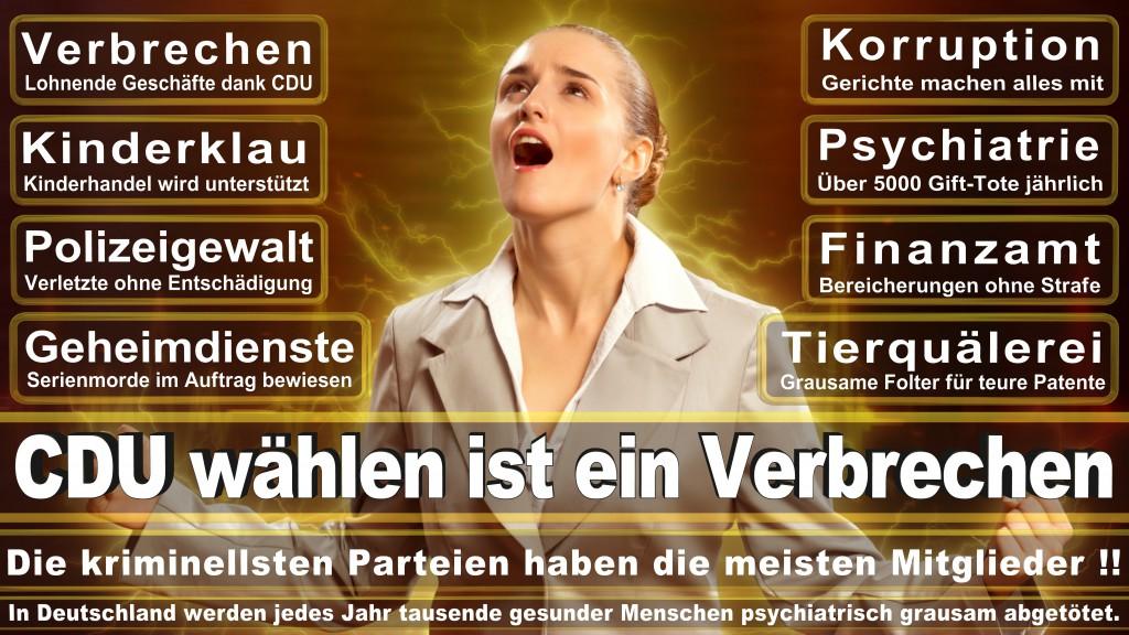 Landtagswahl-Mecklenburg-Vorpommern 2016 (176)