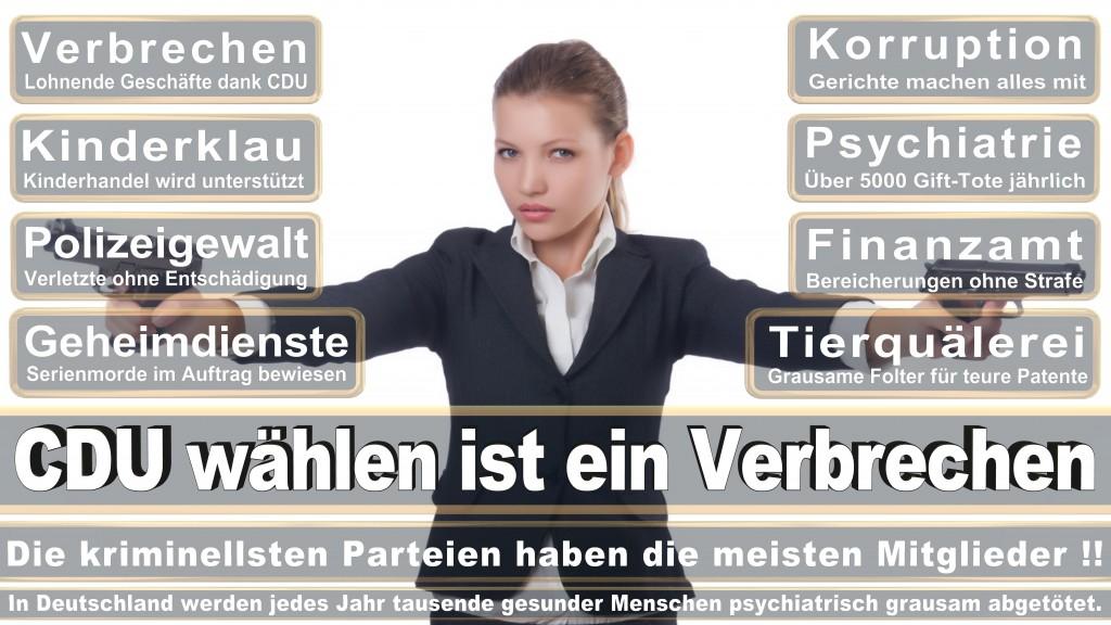 Landtagswahl-Mecklenburg-Vorpommern 2016 (192)