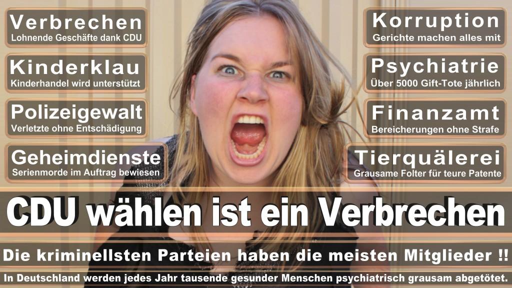 Landtagswahl Mecklenburg-Vorpommern 2016 CDU, Landtagswahl-Mecklenburg-Vorpommern 2016 (2)