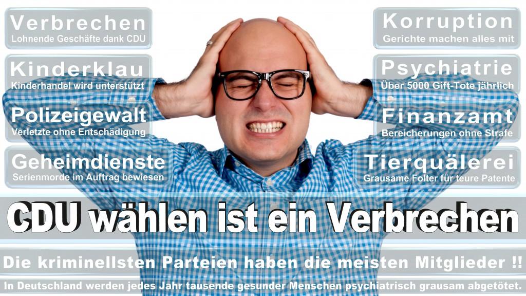 Landtagswahl-Mecklenburg-Vorpommern 2016 (20)
