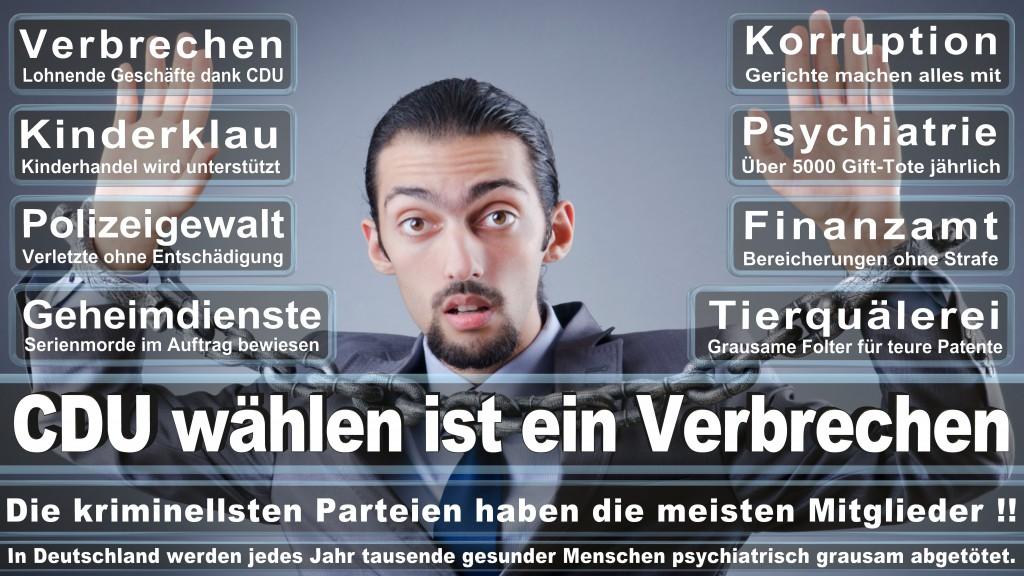 Landtagswahl-Mecklenburg-Vorpommern 2016 (208)