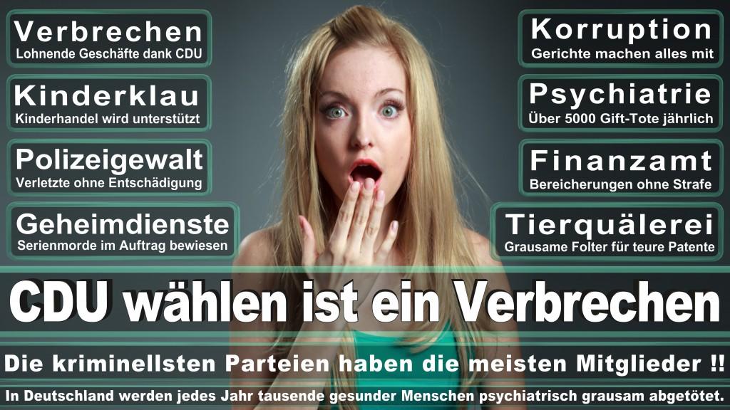 Landtagswahl-Mecklenburg-Vorpommern 2016 (217)