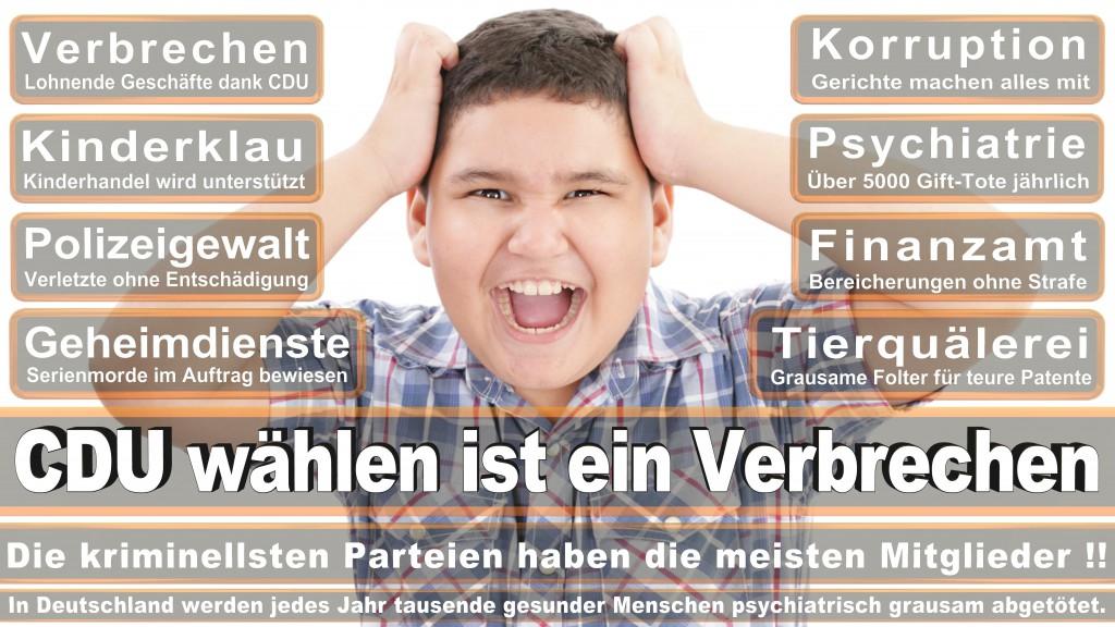 Landtagswahl-Mecklenburg-Vorpommern 2016 (219)