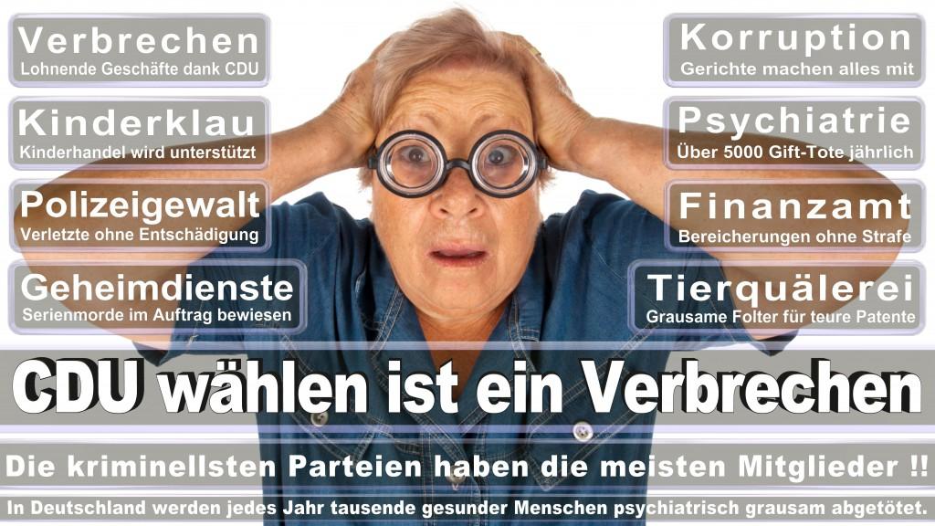Landtagswahl-Mecklenburg-Vorpommern 2016 (222)