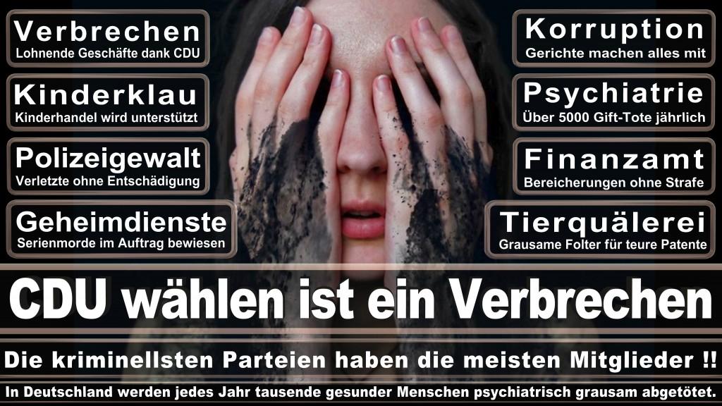 Landtagswahl-Mecklenburg-Vorpommern 2016 (24)