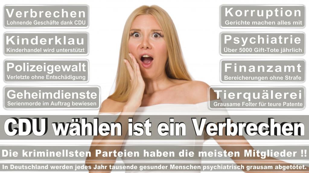 Landtagswahl-Mecklenburg-Vorpommern 2016 (241)