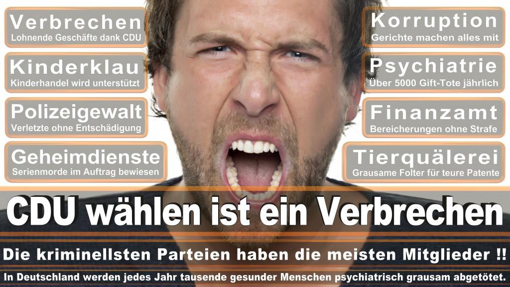 Landtagswahl-Mecklenburg-Vorpommern 2016 (246)