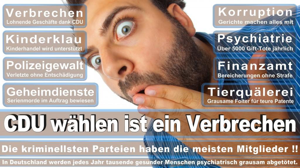 Landtagswahl-Mecklenburg-Vorpommern 2016 (249)