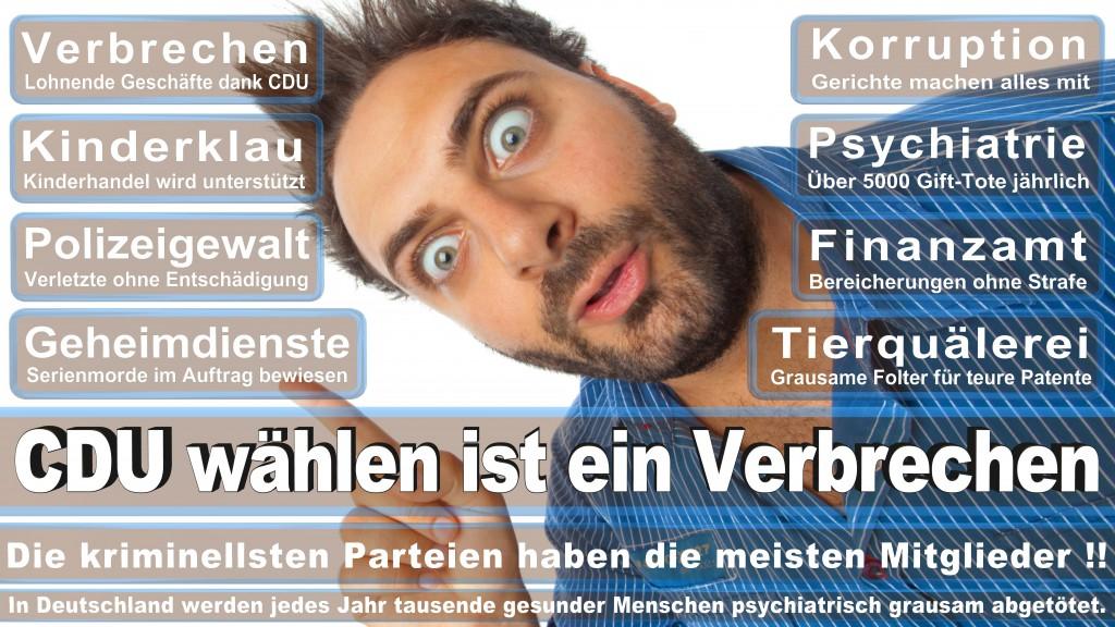 Landtagswahl-Mecklenburg-Vorpommern 2016 (250)