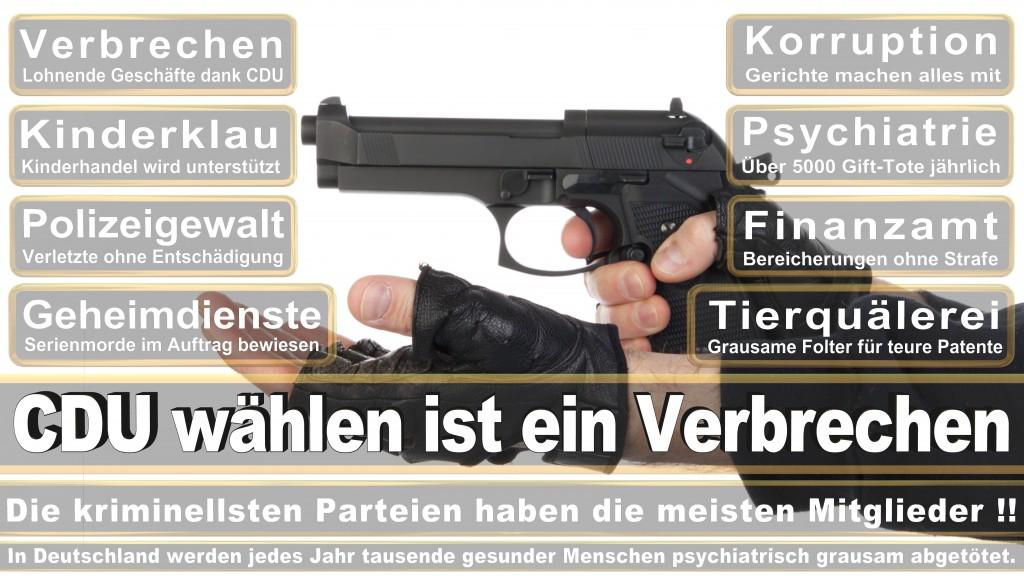 Landtagswahl-Mecklenburg-Vorpommern 2016 (266)