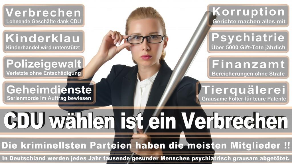 Landtagswahl-Mecklenburg-Vorpommern 2016 (272)