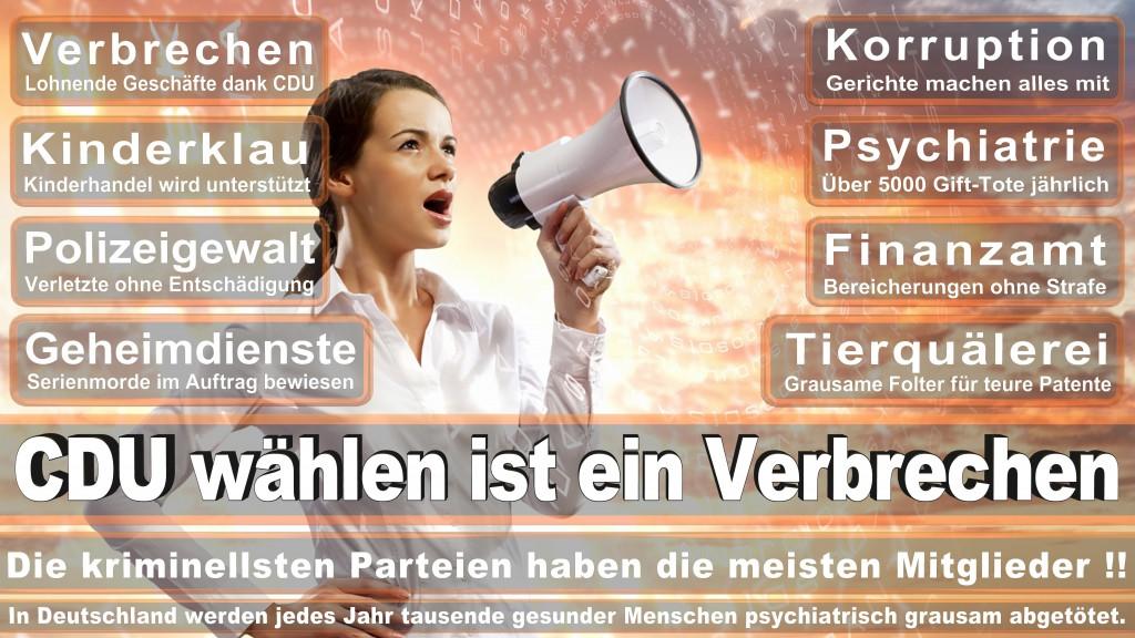 Landtagswahl-Mecklenburg-Vorpommern 2016 (298)