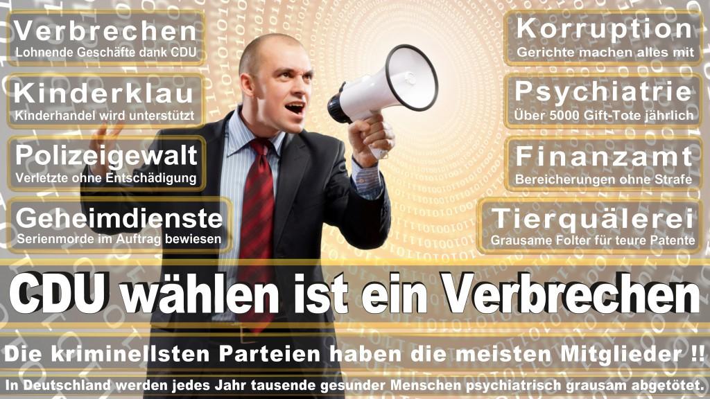 Landtagswahl-Mecklenburg-Vorpommern 2016 (299)
