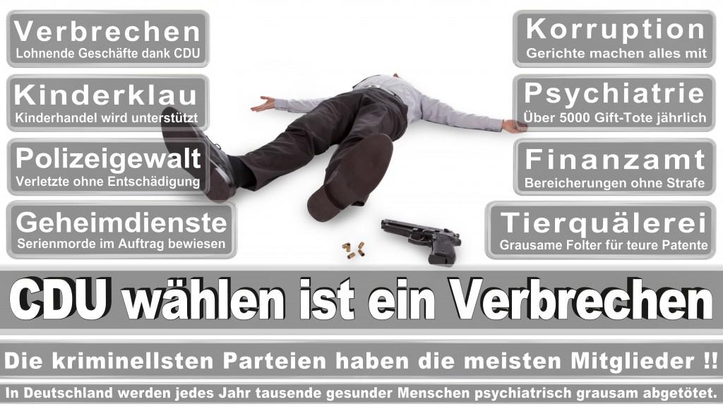 Landtagswahl Mecklenburg-Vorpommern 2016 CDU, Landtagswahl-Mecklenburg-Vorpommern 2016 (3)