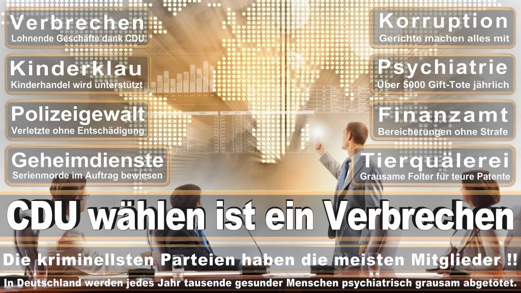 Landtagswahl-Mecklenburg-Vorpommern 2016 (301)