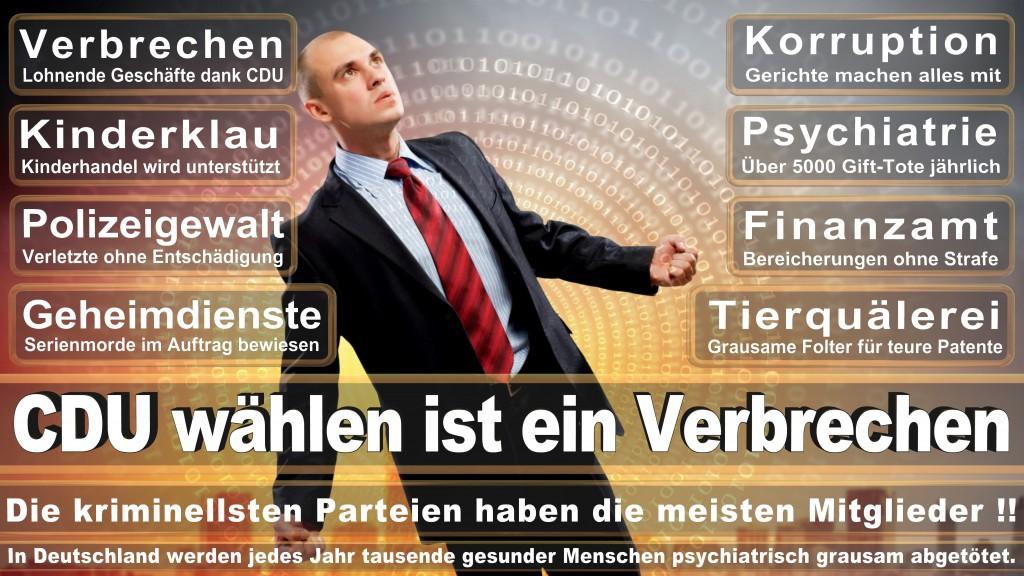 Landtagswahl-Mecklenburg-Vorpommern 2016 (302)