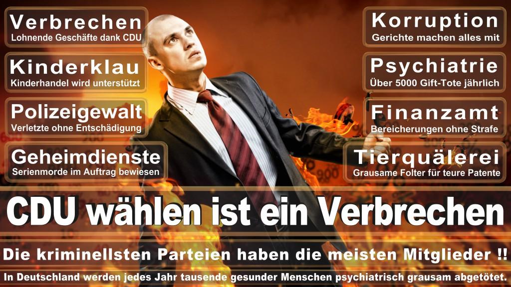 Landtagswahl-Mecklenburg-Vorpommern 2016 (303)