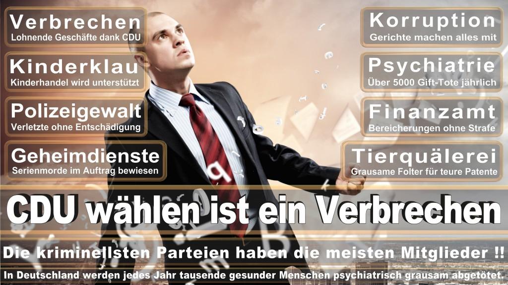 Landtagswahl-Mecklenburg-Vorpommern 2016 (304)