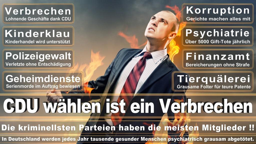 Landtagswahl-Mecklenburg-Vorpommern 2016 (305)
