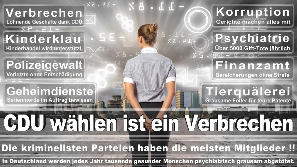Landtagswahl-Mecklenburg-Vorpommern 2016 (306)