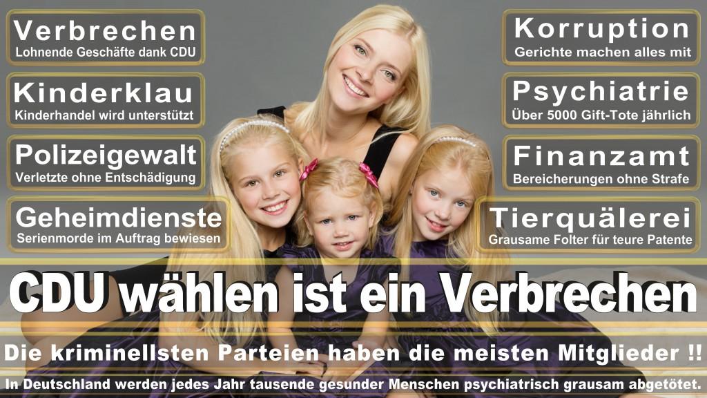Landtagswahl-Mecklenburg-Vorpommern 2016 (307)