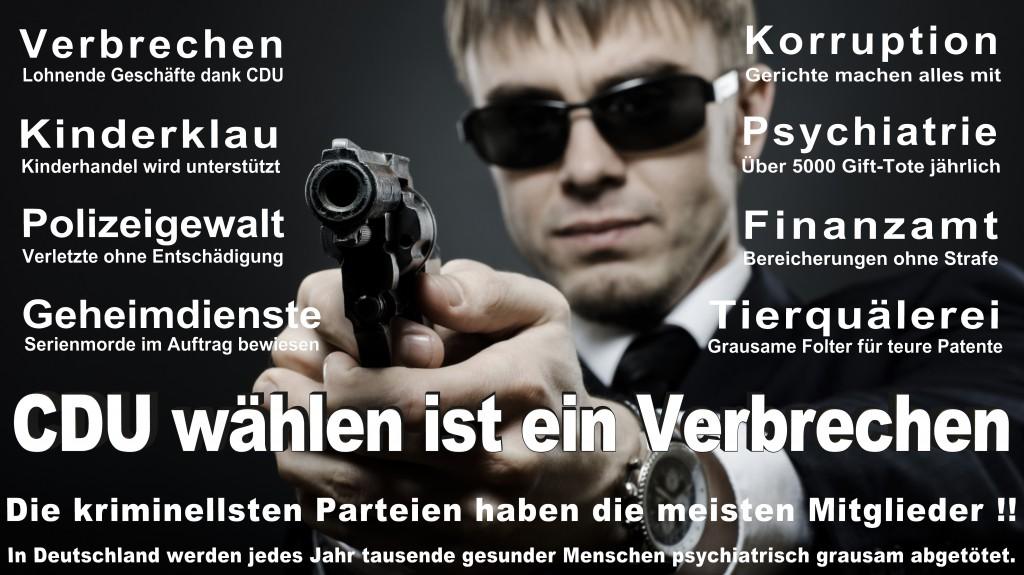 Landtagswahl-Mecklenburg-Vorpommern 2016 (309)