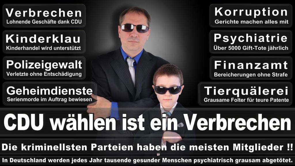 Landtagswahl-Mecklenburg-Vorpommern 2016 (311)