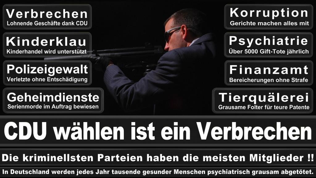 Landtagswahl-Mecklenburg-Vorpommern 2016 (318)