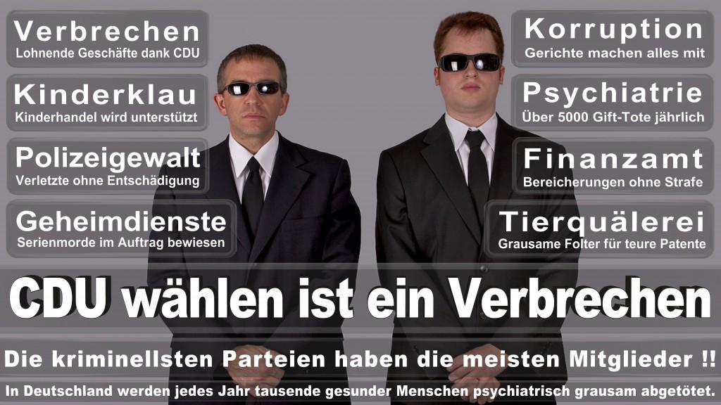 Landtagswahl-Mecklenburg-Vorpommern 2016 (321)