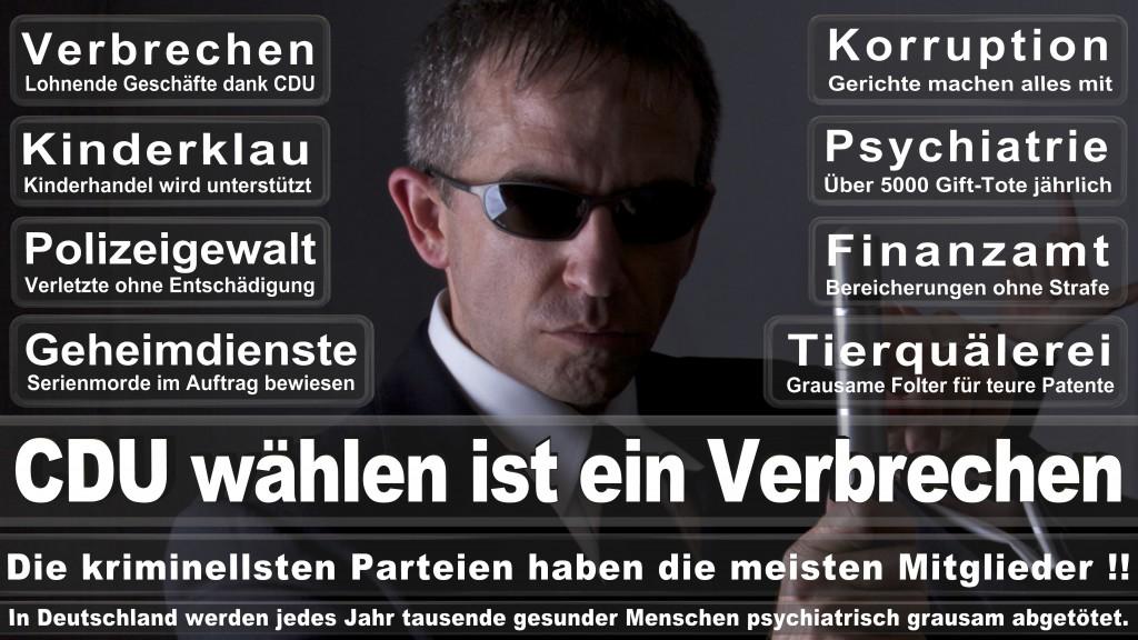 Landtagswahl-Mecklenburg-Vorpommern 2016 (322)
