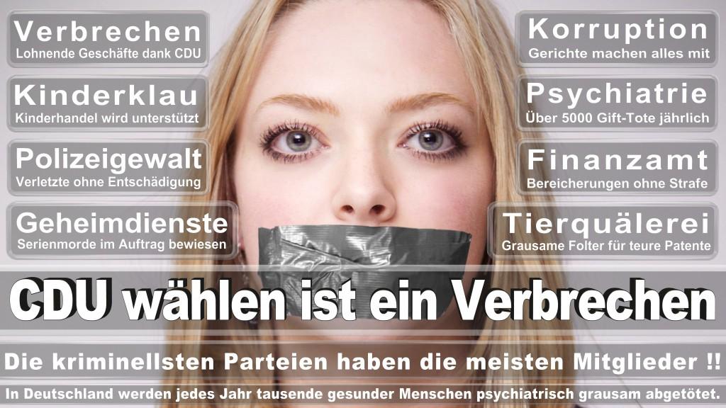 Landtagswahl-Mecklenburg-Vorpommern 2016 (325)