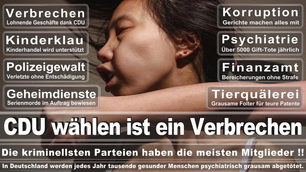 Landtagswahl-Mecklenburg-Vorpommern 2016 (326)