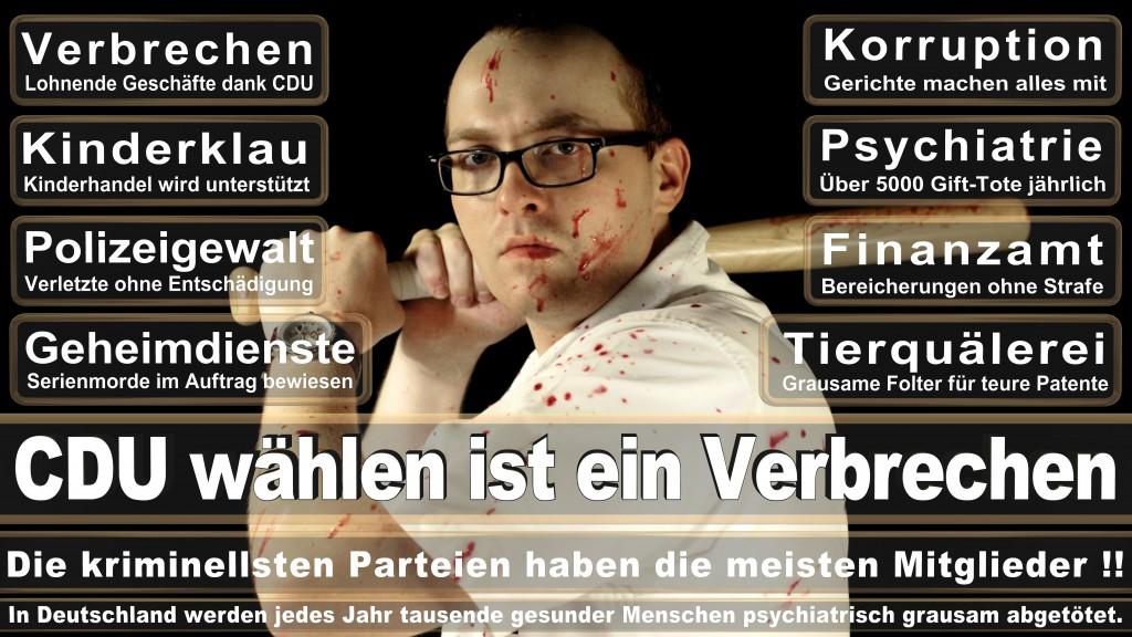 Landtagswahl-Mecklenburg-Vorpommern 2016 (328)