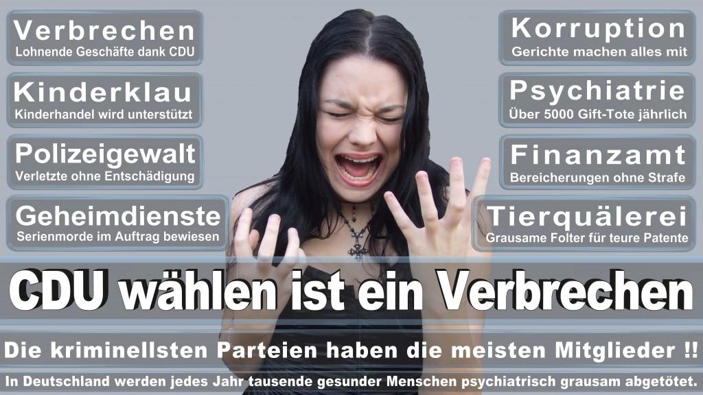 Landtagswahl-Mecklenburg-Vorpommern 2016 (330)