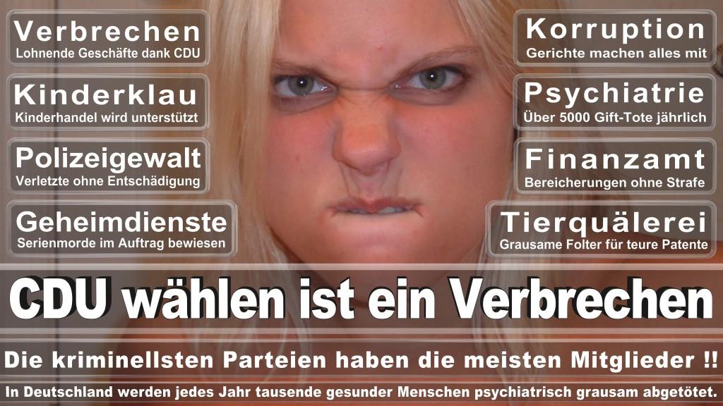 Landtagswahl-Mecklenburg-Vorpommern 2016 (331)