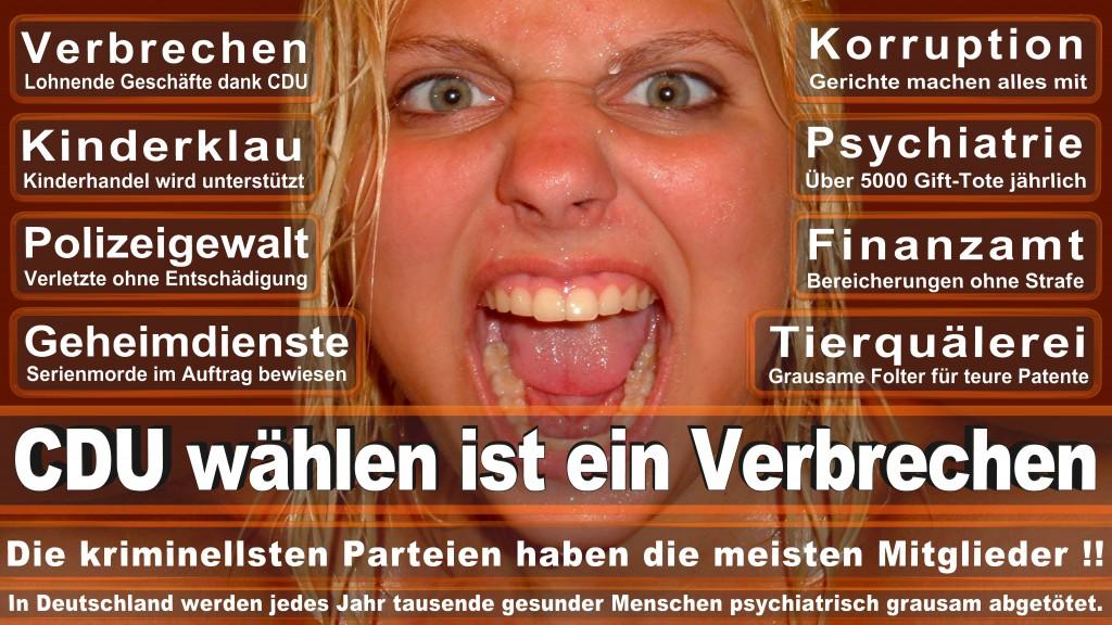 Landtagswahl-Mecklenburg-Vorpommern 2016 (334)