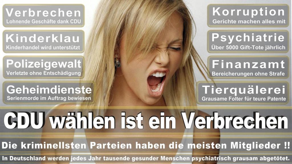 Landtagswahl-Mecklenburg-Vorpommern 2016 (335)