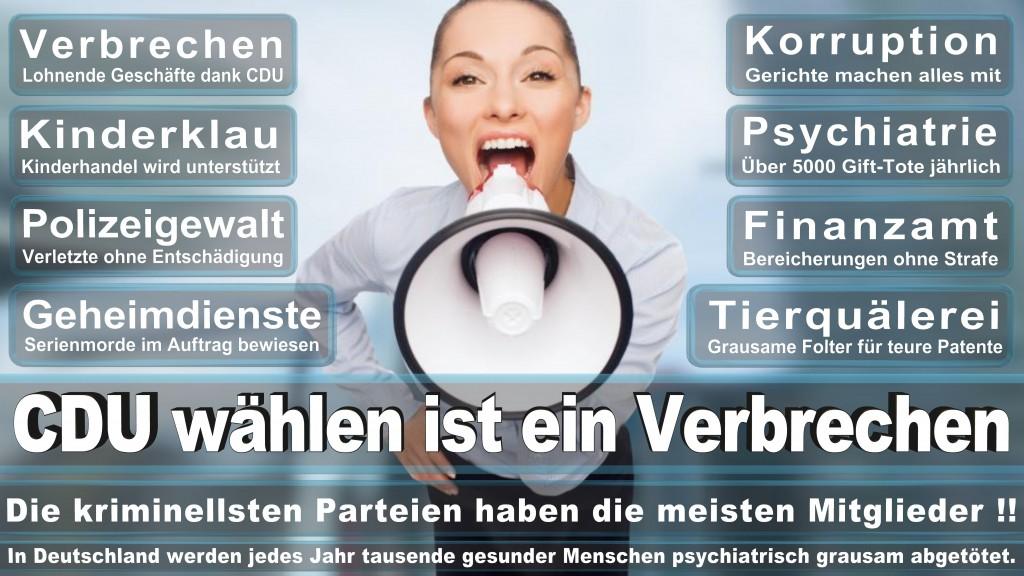 Landtagswahl-Mecklenburg-Vorpommern 2016 (337)