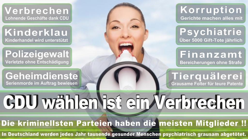 Landtagswahl-Mecklenburg-Vorpommern 2016 (338)