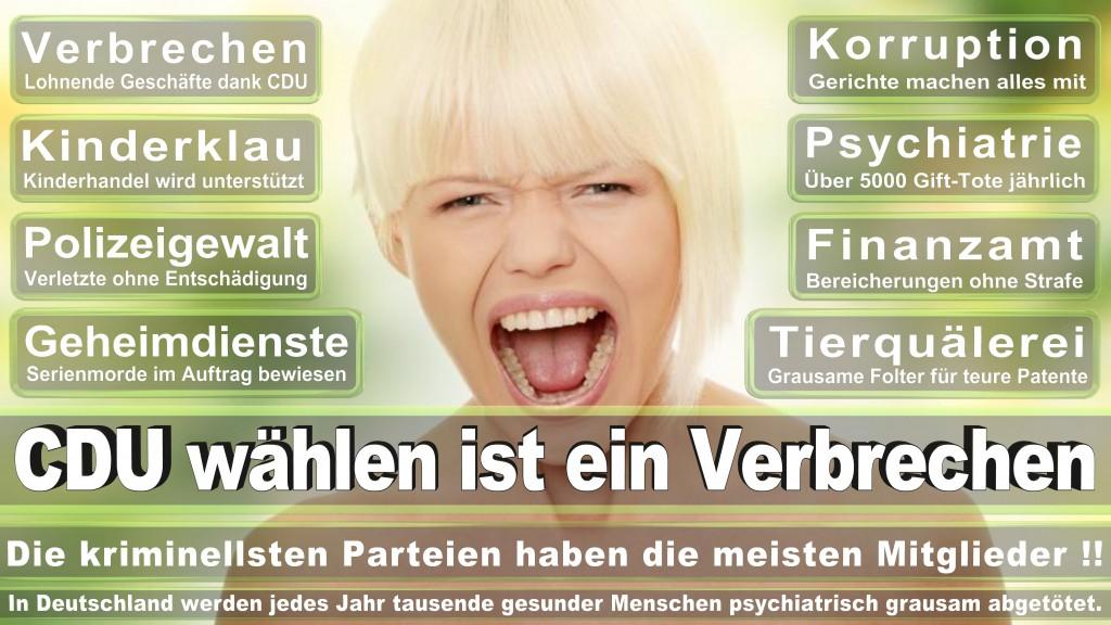 Landtagswahl-Mecklenburg-Vorpommern 2016 (339)